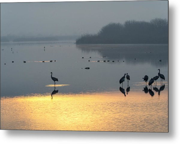 Sunrise Over The Hula Valley Israel 1 Metal Print