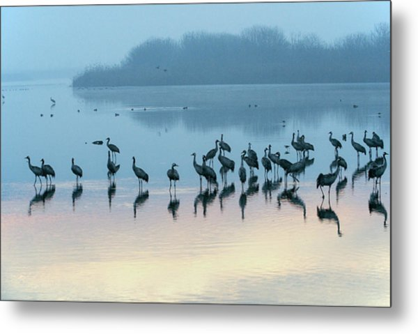 Sunrise Over The Hula Valley Israel 5 Metal Print