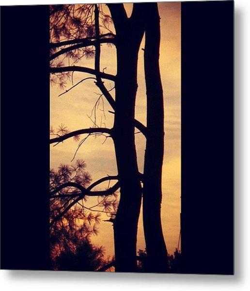 Sunrise Silhouette Metal Print