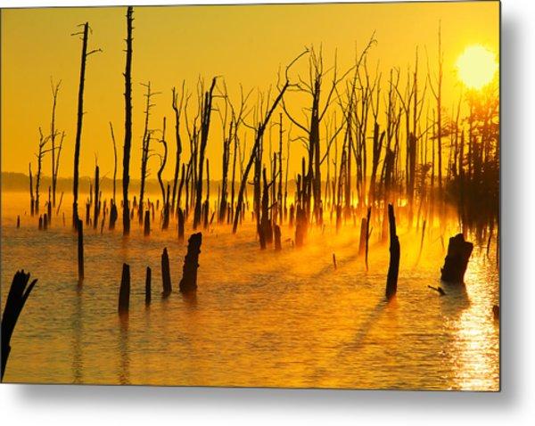 Sunrise Fog Shadows Metal Print