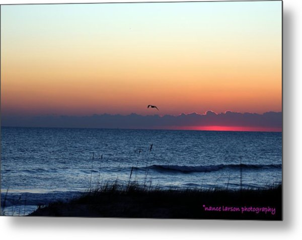 Sunrise In Florida Metal Print
