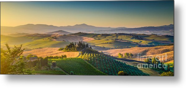 A Golden Morning In Tuscany Metal Print