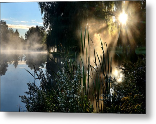 Sunrise Mist At A Marsh Metal Print