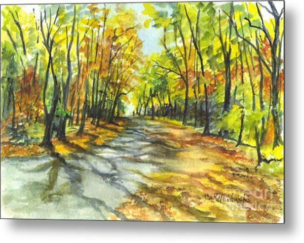 Sunrise On A Shady Autumn Lane Metal Print