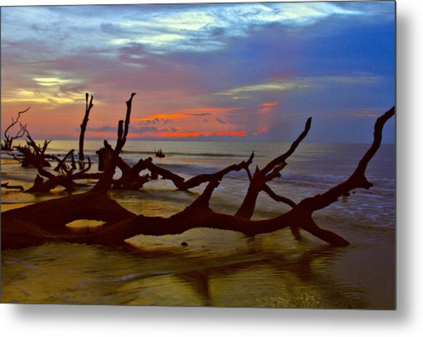 Sunrise On Bulls Island Metal Print