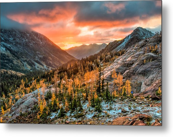 Sunrise On The Larches Metal Print