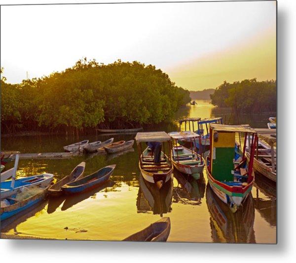 Sunrise Over Gambian Creek Metal Print