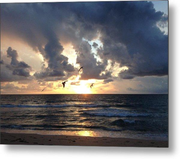 Sunrise Seagulls Metal Print