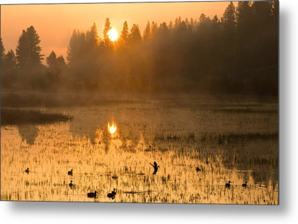 Sunrise Take Off Metal Print