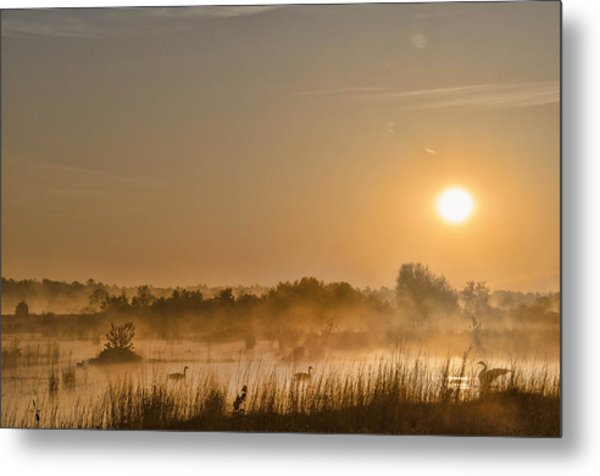 Sunrise With The Geese Metal Print