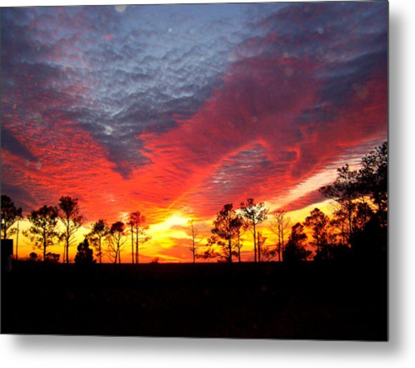 Sunset 5 Metal Print by Stephanie Kendall