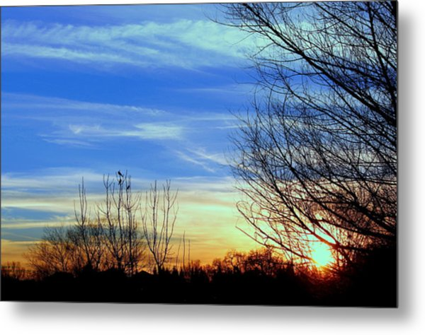 Sunset And 3 Birds Metal Print by Rima Biswas