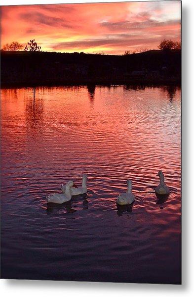 Sunset At Duckpond Metal Print