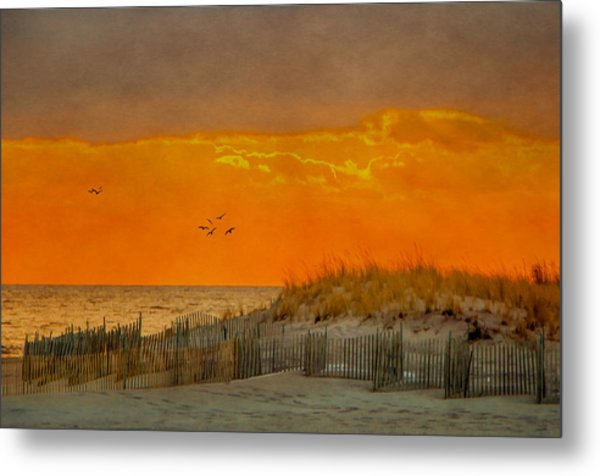 Sunset At Robert Moses Park Metal Print