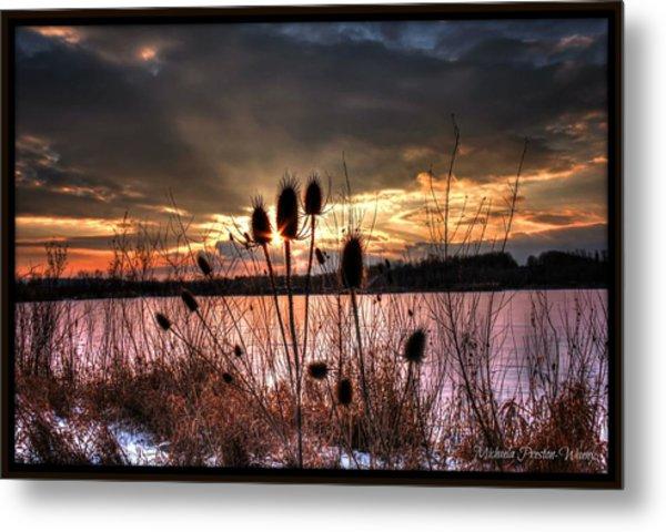 Sunset At The Pond 4 Metal Print