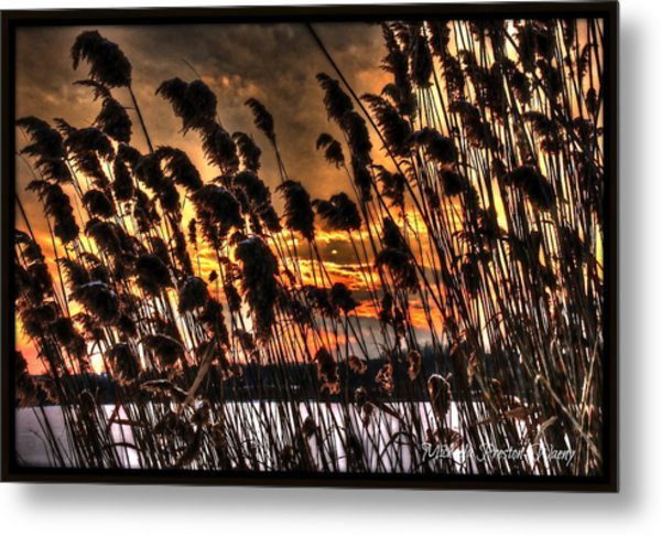 Sunset At The Pond 5 Metal Print