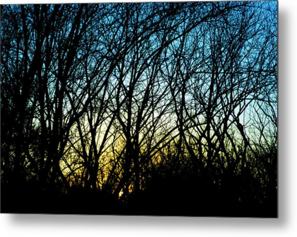 Sunset Behind Trees Metal Print