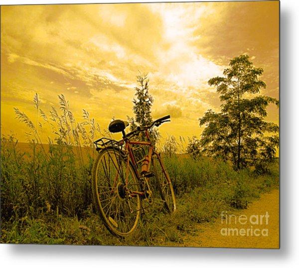 Sunset Biking Metal Print
