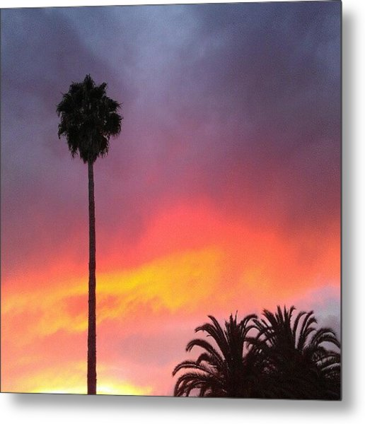 Sunset California Metal Print