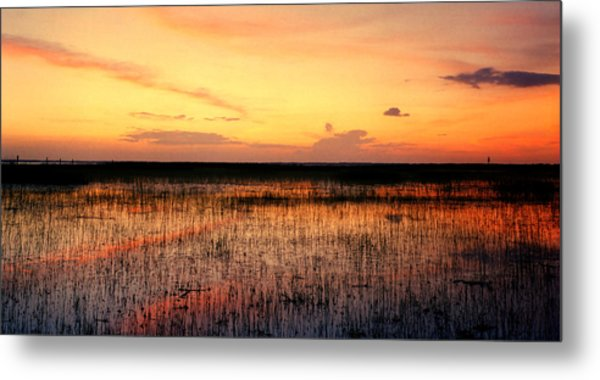 Sunset. East Lake Toho. Metal Print