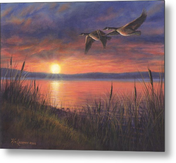 Sunset Flight Metal Print