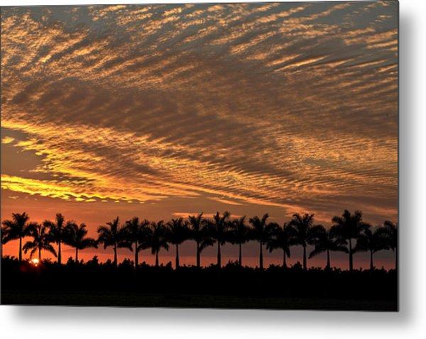 Sunset Florida Metal Print