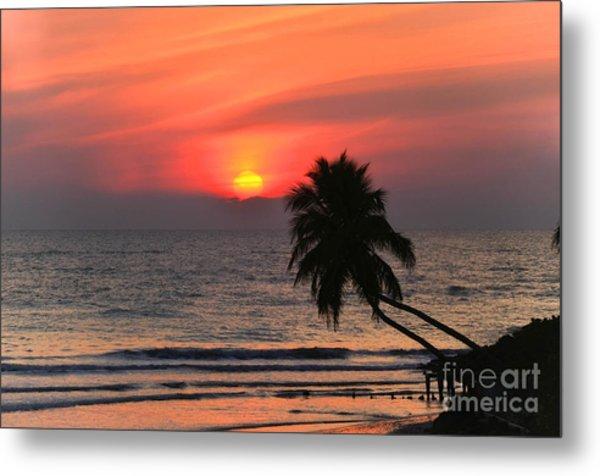 Sunset   Gulf Of Mexico   Naples  Florida Metal Print