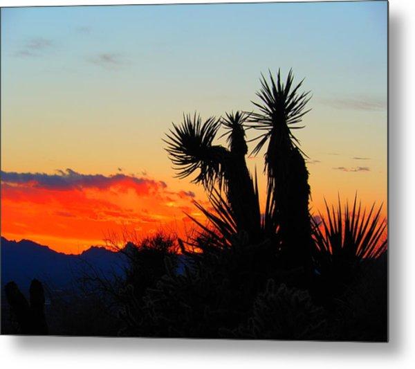 Sunset In Golden Valley Metal Print
