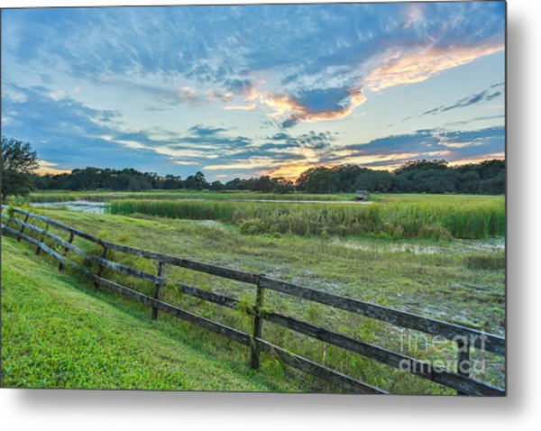 Sunset In Green Field Metal Print by Mina Isaac
