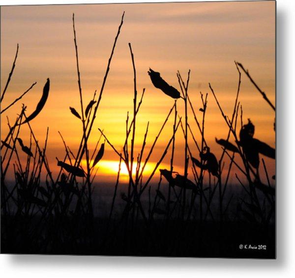 Sunset In Half Moon Bay Metal Print