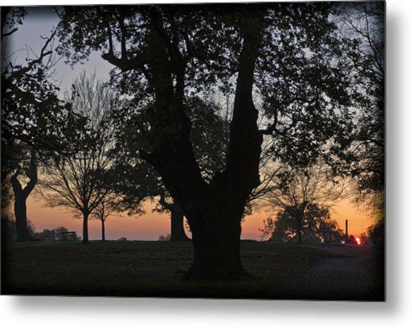 Sunset In Richmond Park Metal Print