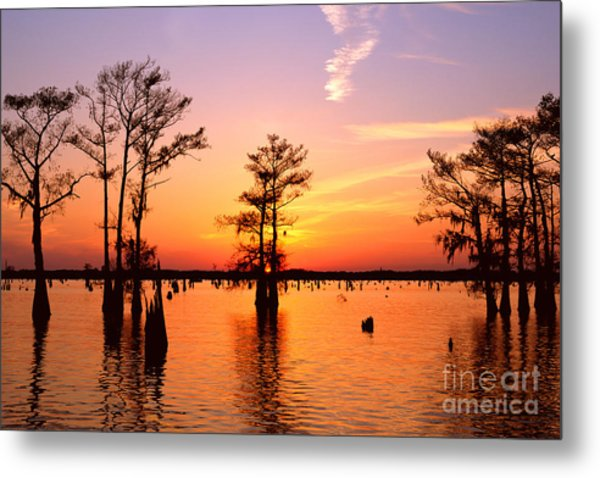 Sunset Lake In Louisiana Metal Print