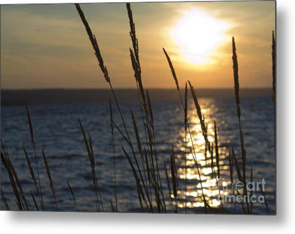 Sunset On Cayuga Lake Metal Print