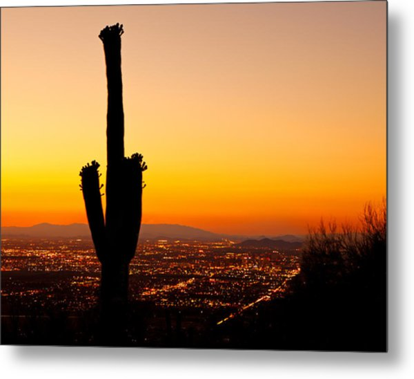 Sunset On Phoenix With Saguaro Cactus Metal Print