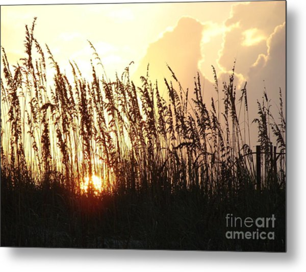 Sunset On The Dunes St. Augustine Metal Print