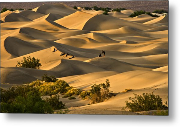Sunset Over Mesquite Flat Dunes Metal Print