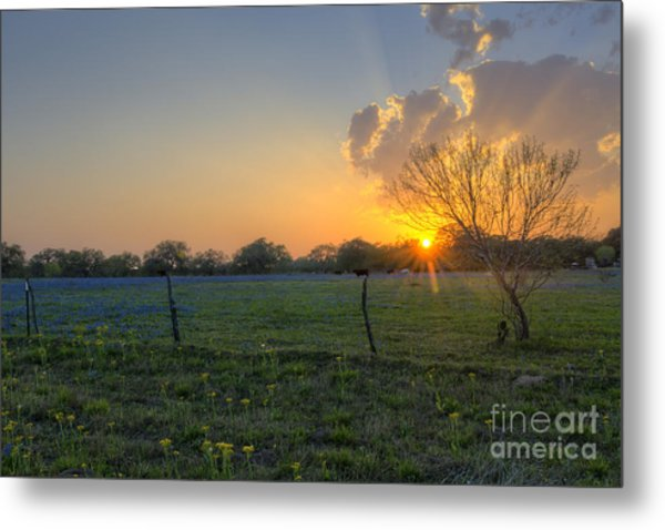 Sunset Over Poteet Texas Metal Print