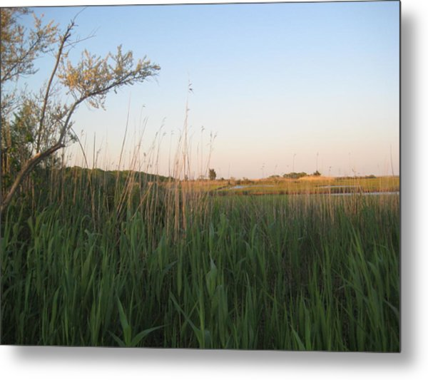 Sunset Over The Marshlands Metal Print