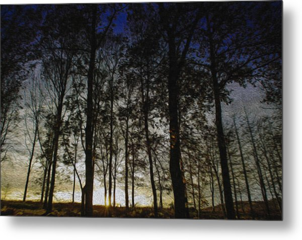 Sunset Metal Print by Paul Dale