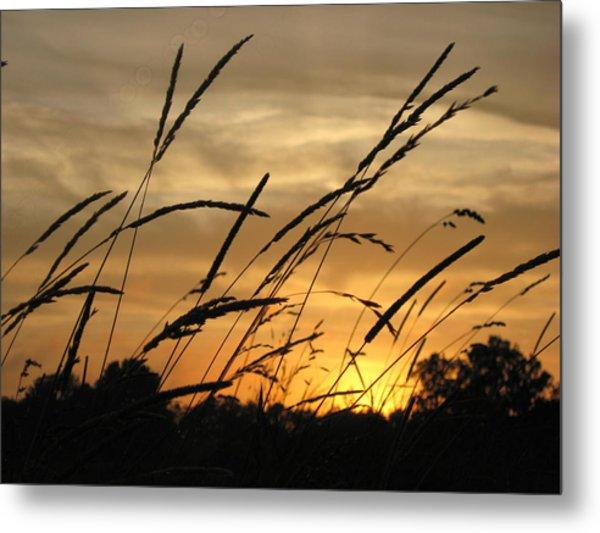 Sunset Sentinels Metal Print