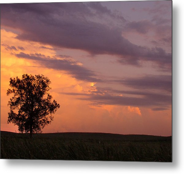 Sunset Sorbet II Metal Print