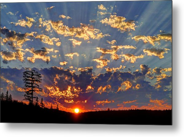 Sunset Spectacle Metal Print