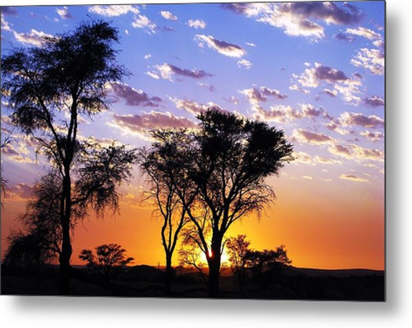 Sunset Splendour Metal Print by Liudmila Di