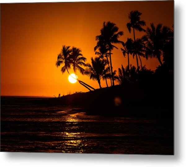 Sunset Through The Palm Trees Metal Print