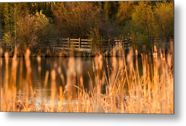 Sunset Tranquility Metal Print by Valerie Pond