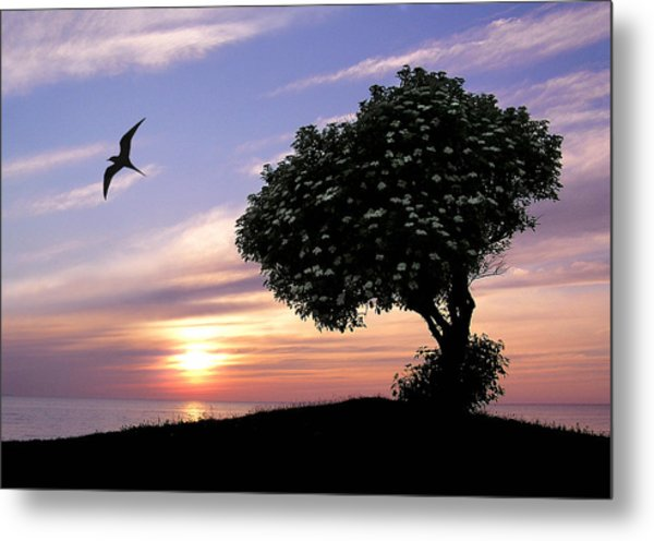 Sunset Tree Of Tranquility Metal Print