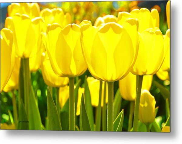 Sunshine Flower Metal Print