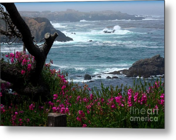 Surf And Turf Metal Print