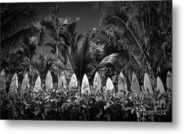 Metal Print featuring the photograph Surf Board Fence Maui Hawaii Black And White by Edward Fielding