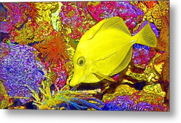 Surgeon Fish Yellow Tang Digital Art Metal Print